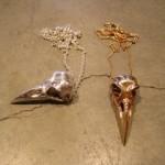 Charles Darwin Jewels