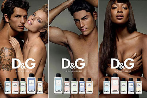 Inspiration behind D&G's Anthology?