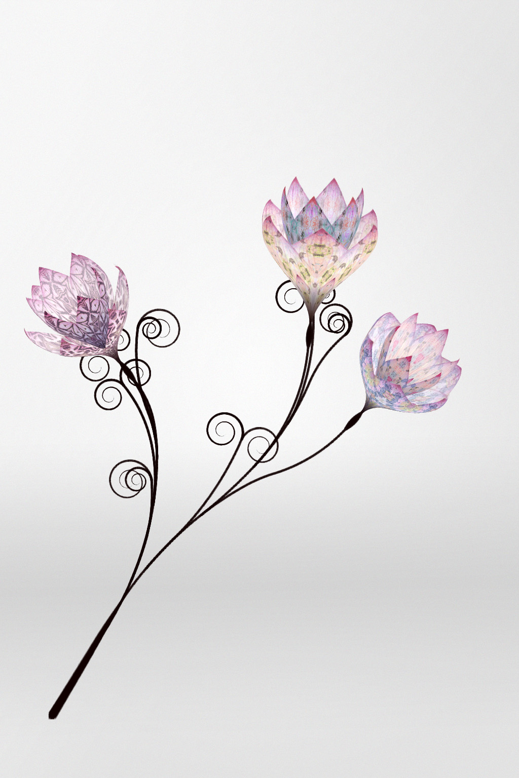 Grow your own digital flower this Valentine's day with Mulberry