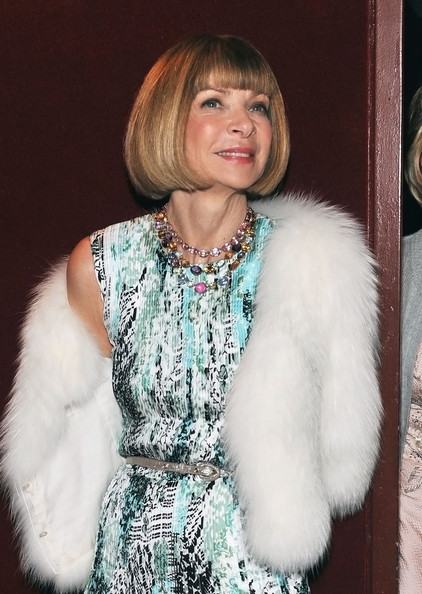 Anna Wintour doesn't like using adjectives