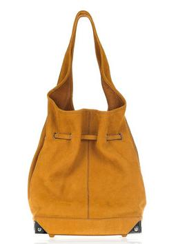 Handbag Hunter: Alexander Wang Robyn Hobo