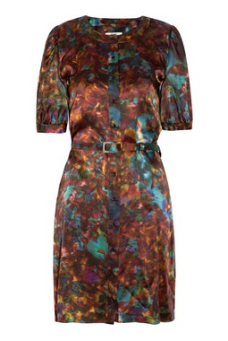 Lunchtime buy: Erdem Zoffony printed silk dress