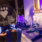 Who were the big fashion winners at the RSPCA Good Business Awards?