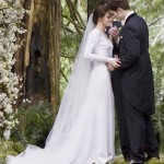 A closer look at Bella Swan's Carolina Herrera wedding dress