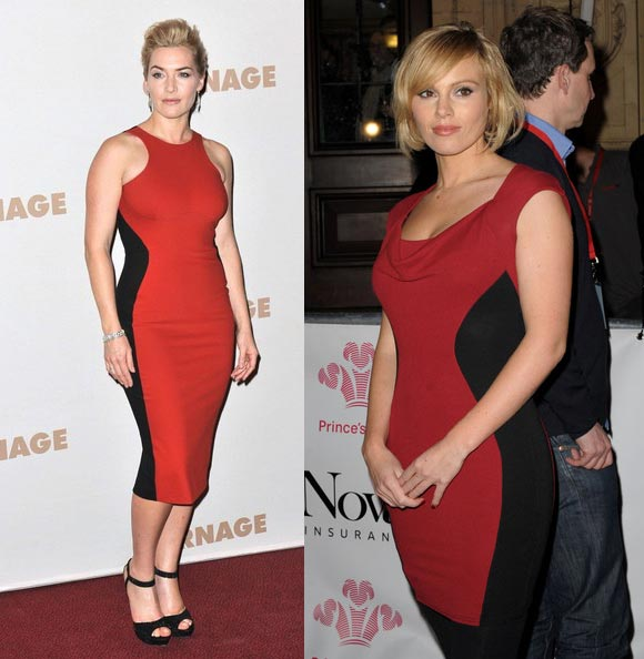 Apprentice winner Michelle Dewberry wears £50 version of Kate Winslet's Stella McCartney dress!