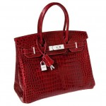 This Hermès Birkin sells for over $200,000; sets world record