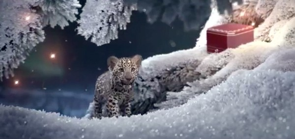 Watch adorable cubs play in the snow for Cartier's Christmas video