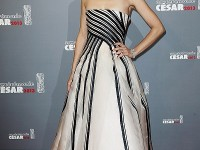 MC In Dior Cesar Awards