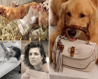 Charlotte Casiraghi's final Gucci Forever Now ads revealed