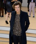 harry-styles-burberry-shirt-auction