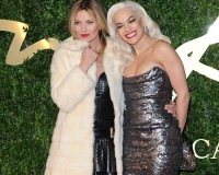 Who won what at the 2013 British Fashion Awards…