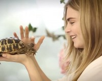 Watch Cara Delevingne's animal tea party for Mulberry SS14 video campaign