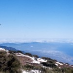 Top Tourist Attractions in Tenerife