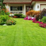 How to Choose a Lawn Care Service
